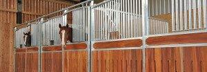 Pferdepension Büchenbronn